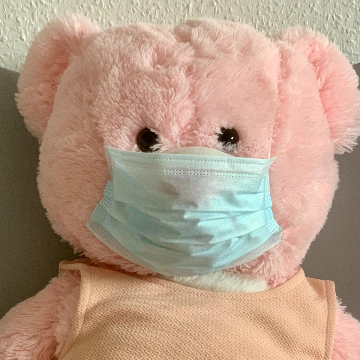 teddy bear wearing face mask